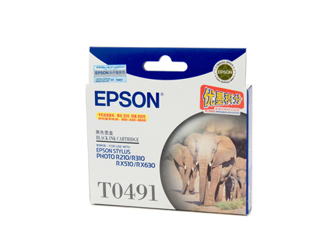 Genuine Epson T0491 Black ink cartridge